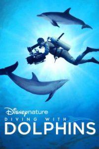 ดูสารคดี Diving with Dolphins (2020) Disney+