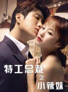 ดูหนังจีน The Special Agent and His Hot Girl (2020) ซับไทย เต็มเรื่อง
